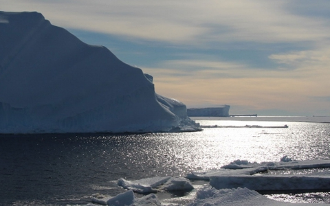 Berg antarctiques