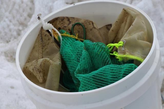 Petits filets ajourés pour y placer la future récolte en cours de plongée © MNHN / MSA / IPEV