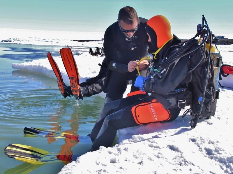 Bravo Anouchka pour ta première plongée polaire © MNHN / MSA / IPEV © IPEV/MSA/MNHN